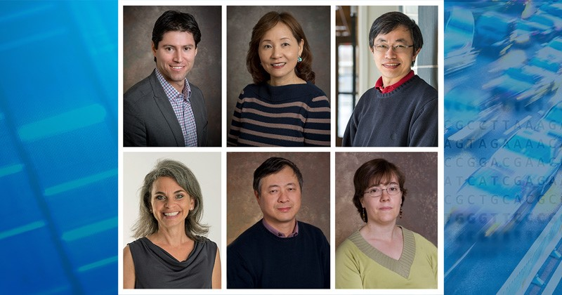 2019 Highly Cited Researchers